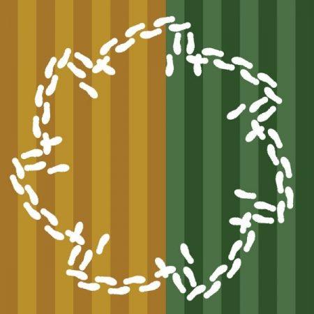 кръгла схема на Дайчово хоро с фон за тактов размер