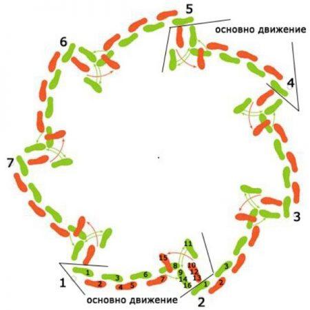 кръгла схема със стъпките на Дайчово хоро