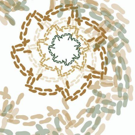 многопластово изобразяване на стъпките на Дайчово хоро